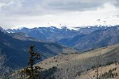 stock photo of blanket snow  - A snow blanket is still over San Juan mountains in Colorado - JPG