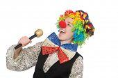 foto of maracas  - Female clown with maracas isolated on white - JPG