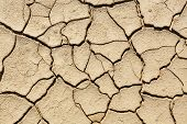 picture of drought  - Cracked land caused by drought Natural backgrounds and textures - JPG