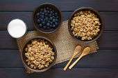 stock photo of cereal bowl  - Dried berry and oatmeal breakfast cereal in rustic bowls with fresh blueberries and a glass of milk photographed overhead on dark wood with natural light - JPG