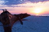 picture of shipwreck  - Shipwreck on a beach in Gulf Shores - JPG