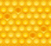 Nido de abeja, malla