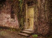 Yellow Door In Ruins