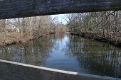 Framed River Showing Reflection