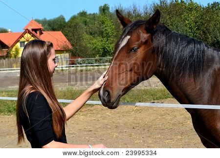 Picture or Photo of Long haired young woman fondling a brown horse at a horse farm.