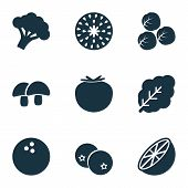 Fruit Icons Set With Acorn, Coco, Spinach And Other Coconut Elements. Isolated  Illustration Fruit I poster