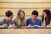 Estudiantes trabajan juntos en un anfiteatro