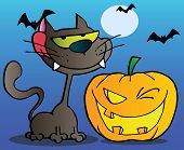 Black Cat And Winking Halloween Jackolantern Pumpkin With Bats