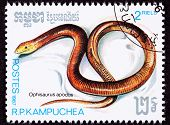 Canceled Cambodian Postage Stamp Sheltopusik, European Legless Lizard, Ophisaurus Apodus