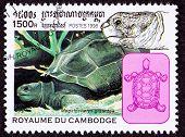 Canceled Cambodian Postage Stamp Aldabra Giant Tortoise Geochelone Gigantea Head