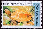 Canceled Togan Postage Stamp Orange Keeled Box Turtle Pyxidea Mouhotii