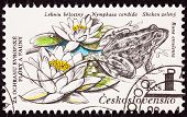 Czechselovakian Postage Stamp Edible Frog, Pelophylax Esculentus, Lily, Nymphaea Candida
