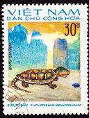 Canceled Vietnamese Postage Stamp Big-headed Turtle Platysternon Megacephalum, Watercolor