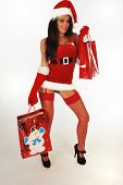 Sexy Santa With Shopping Bags