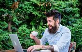 Offsite Work. Hipster Drinking Tea And Using Computer Work Station Outdoor. Bearded Man Doing His Wo poster