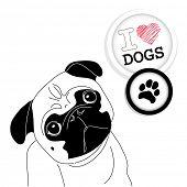 I love Pugs! Cute little pug on polka dot background