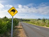 Attention Kiwi Crossing Roadsign at NZ rural road