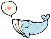 cartoon whale in love