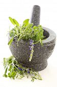 Fresh herbs in granite mortar