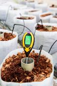 Use Soil Ph Meter For Check The Ph Value poster