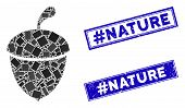 Mosaic Acorn Pictogram And Rectangle Hashtag Nature Seal Stamps. Flat Vector Acorn Mosaic Pictogram  poster