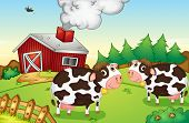Illustration of cows on a farm -