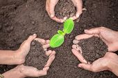 The Soil In The Hands Of Parents And Children.conserve The Environment By Planting Trees. And Protec poster