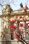 Blooming tree on background of monument to Alfonso XII in Retiro Park in Madrid, Spain.