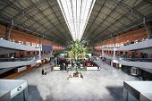 MADRID - MARCH 8: Winter garden in Atocha railway station on March 8, 2012 in Madrid, Spain. Atocha