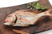 a red sea bream grilled with salt, tai no shioyaki, japanese cuisine