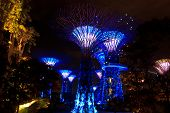 Garden By The Bay8