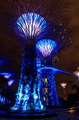 Garden By The Bay9