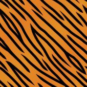 Tiger Stripe Pattern
