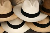 foto of panama hat  - Handmade Panama Hats in a variety of colors for sale at the outdoor craft market in Otavalo - JPG