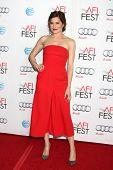 LOS ANGELES - NOV 13:  Kathryn Hahn at the