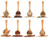 Chinese herbal medicine ingredients in olive wood spoons over white background.