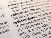 Referendum Dictionary Definition