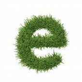 Letter of the alphabet made from grass