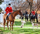 Shaker Village of Pleasant Hill - November 24: Traditional ceremony of blessing of the hounds and fox hunt in Shaker Village of Pleasant Hill, Kentucky, November 24, 2012