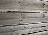 Weathered Barnwood Plank  Background