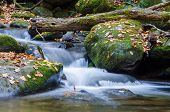 stock photo of gatlinburg  - A stream in the Smoky Mountains National Park near Gatlinburg Tennessee - JPG