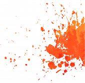Orange Blot
