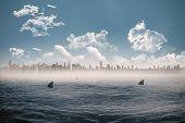 Digitally generated cityscape on horizon over shark infested sea
