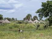 traditional village along nile river in south sudan