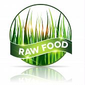 Raw Food Icon