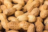 image of groundnuts  - Pile Of Peanuts In Shell Close Up - JPG
