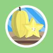 Starfruit Flat Design Illustration