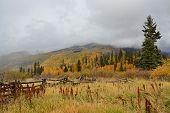 Western Fall