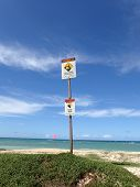 Warning Signs At Maui Beach