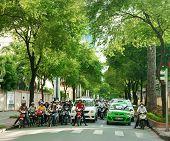 Asian City, Green Tree, Vietnamese Street